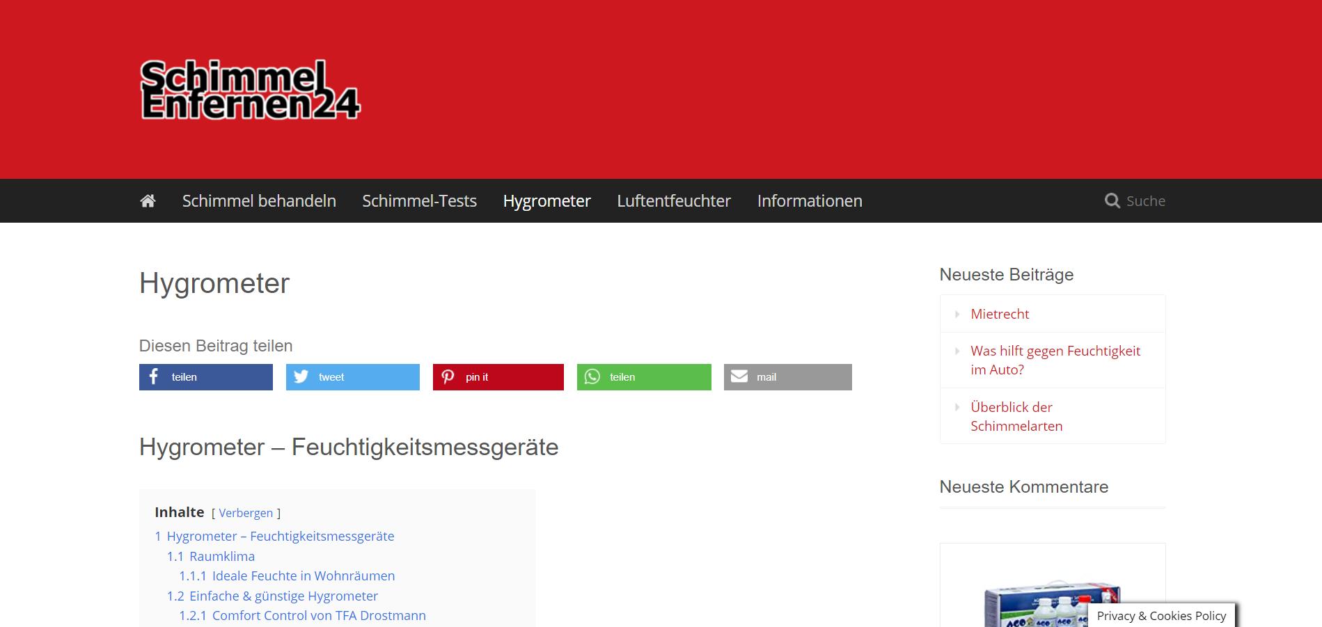 Webseiten-Vorschau-Schimmel-entfernen
